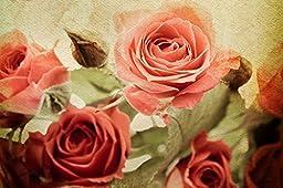 Startonight Wall Art Canvas Daydream Roses, Flowers USA Design for Home Decor, Dual View Surprise Artwork Modern Framed Ready to Hang Wall Art 23.62 X 35.43 Inch 100% Original Art Painting!