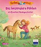 VORLESEMAUS 15: Das besondere Fohlen: und 5 weitere Pferdegeschichten