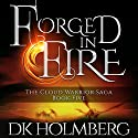 Forged in Fire Audiobook by D. K. Holmberg Narrated by Nicholas Techosky