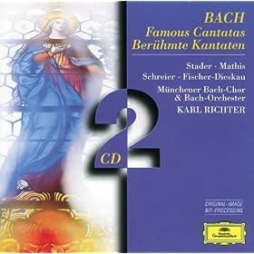 "J.S. Bach: Cantata ""Christ lag in Todesbanden"", BWV 4 - 4. Versus 3: ""Jesus Christus, Gottes Sohn"""