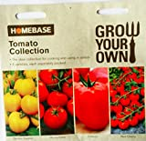 Homebase Tomato Collection Seeds - 4 varieties , each separately packed Golden Sunrise , Oxheart , Moneymaker , Red Cherry