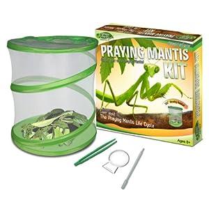 Fascinations GreenEarth Praying Mantis Kit