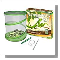 Fascinations GreenEarth Praying Mantis Kit