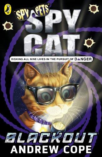 Spy Cat 2 Blackout