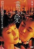 華の愛 遊園驚夢 [DVD]
