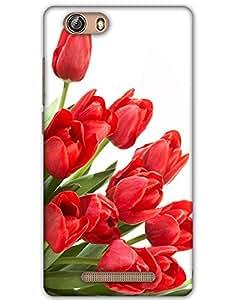Webplaza Gionee Marathon M5 Lite back cover Designer High Quality Premium Matte Finish 3D Case