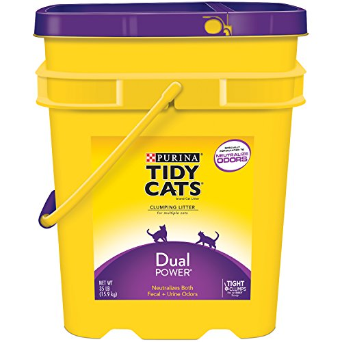 tidy-cats-cat-litter-clumping-dual-power-35-pound-pail-pack-of-1