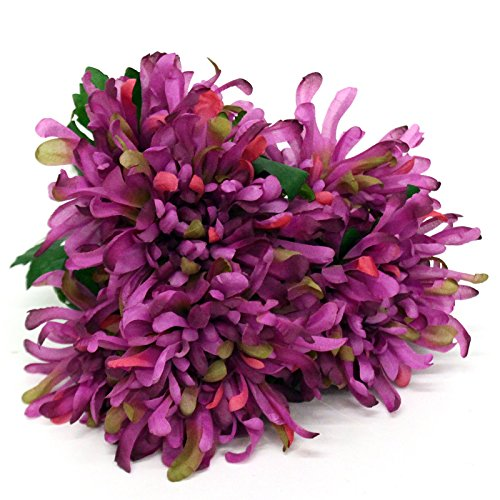 "20"" Spider Mum Fall Colors (6 Flowers) (Purple)"
