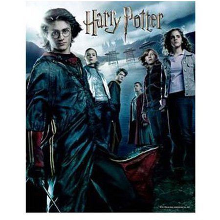 Cheap Hobbico Visual Echo 3D Effect Harry Potter Goblet of Fire 500pc Lenticular Puzzle (B000YBBYYG)