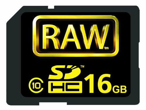 Hoodman Raw RAW 16 GB SDHC 16 GB 150X SDHC Secure Digital CardB001D6MD7I