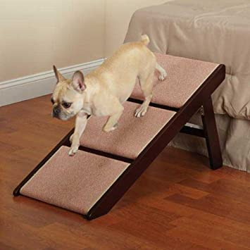 Folding dog Steps Pet Studio