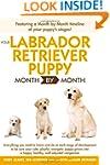 Your Labrador Retriever Puppy Month B...