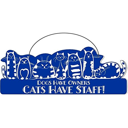 Cool Cats Cat-Gang Shaped Laser-Etched 3-In-1 Plaques Ver1 Have Staff Bue front-259435