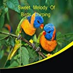 Sweet Melody of Birds Chirping