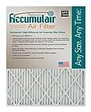 Accumulair Platinum 16x30x1 (15.5x29.5) MERV 11 Air Filter/Furnace Filters (2 pack)