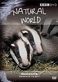 Natural World - Badgers Secrets Of The Sett [DVD]