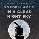 Snowflakes in a Clear Night Sky | Jamie Sutliff