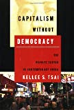Image of Capitalism without Democracy: The Private Sector in Contemporary China