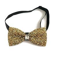 Sunny Home Men's Crystal Shining Pre Tied Bow Tie Bowtie Wedding Party (Golden)
