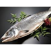 サーモン専門店岩松 北海道産 新巻鮭(秋鮭)一本物【約4キロ】化粧箱入