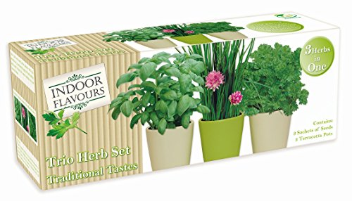 indoor-herb-garden-seed-kit-gift-grow-your-own-box-trio-herb-sets-various-sets-flavours-available-tr