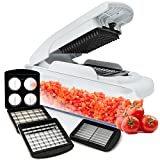 Vegetable and fruit Chopper | slicer dicer for onion and other vegetables | 4 adjustable stainless steel blades with food container and non skid base by Fullstar