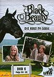 Black Beauty, Teil 06 title=