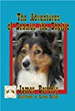 The Adventures of Seamus the Sheltie