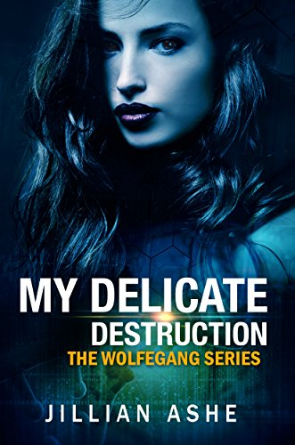 My Delicate Destruction by Jillian Ashe ebook deal