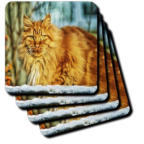Florene - Cat Art - Print of Orange Tabby In Snow Painting - set of 4 Ceramic Tile Coasters (cst_203834_3)