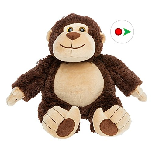 Record Your Own Plush 16 inch the Brown Monkey - Ready To Love In A Few Easy Steps (Sock Teddy Bear compare prices)