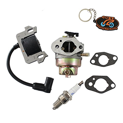 Cheap Price Cozy Pack of Carburettor & Ignition coil Spark