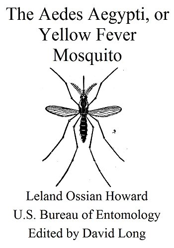The Aedes Aegypti, or Yellow Fever Mosquito