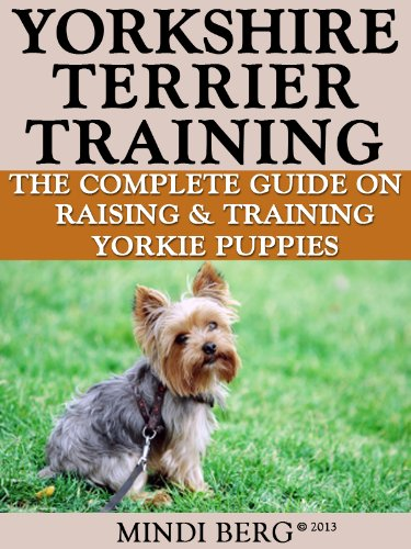 Guide Dog Puppy Training Techniques