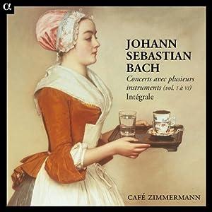 Bach: Concerts avec plusieurs instruments, Vol. I à VI intégrale