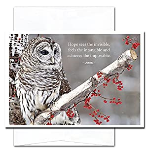 Hope: New Year Holiday Cards - box of 10 cards & envelopes