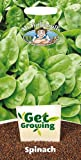 Mr. Fothergill's 21390 300 Count Get Growing Emilia F1 Spinach Seed