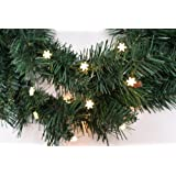 Starlite Creations Battery Operated LED SnowFlake Charm Wire, 9 ft, 24 LEDs, White Color, Bundle Pack
