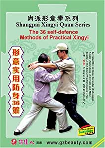 The Techniques and Combat of Xingyi Twelve-styles Quan