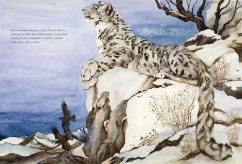 La panthère blanche (Les contes)