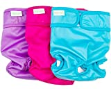 Wegreeco Premium Dog Diapers Female(3 Pack) - Durable Reusable Dog Diapers for Pets(Large)