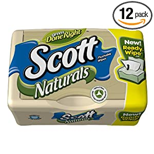 12-Pack Moist Wipes