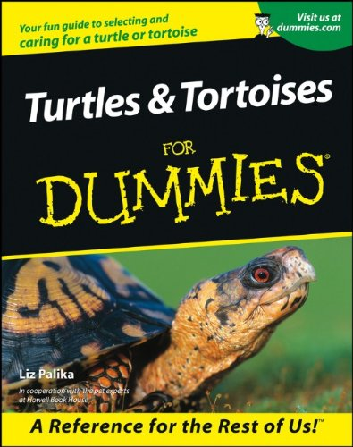 tortoise pet book eur 10 54 turtles tortoises for dummies