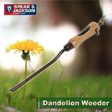 英国ブランド Spear&Jackson ダンデライオン ウィーダー(タンポポ抜き)