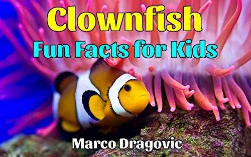 Clownfish: Fun Facts for Kids, Picture Books for Kids, Beautiful Images and Interesting Facts About Clownfish (Hermaphrodite Picture compare prices)