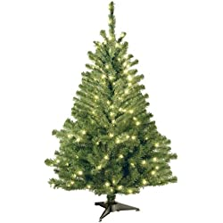 National Tree (KCDR-40LO-S) Kincaid Spruce Tree with 100 Clear Lights, 4-Feet