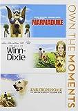 Marmaduke / Because of Winn Dixie / Far From Home [DVD] [Region 1] [US Import] [NTSC]