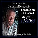Homo Spiritus: Devotional Nonduality Series (Realization of the Self as the 'I' - November 2003)