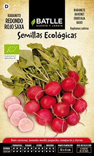semillas-batlle-655101bols-rabanito-redondo-rojo-saxa-eco