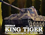 1/35 King Tiger brown camouflage (Full Function RC tank) (japan import)